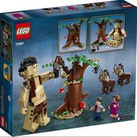 Lego Harry Potter - A Floresta Proibida - 75967